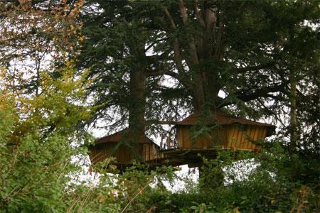 Alojarse en caba as en los arboles for Alojamientos cabanas en los arboles